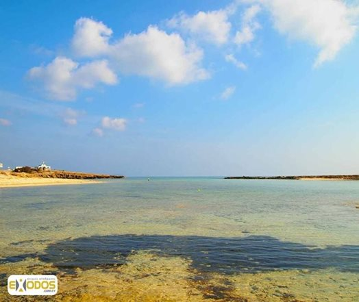 Agia-Thekla-Beach-Blue-Flag-(3).jpg